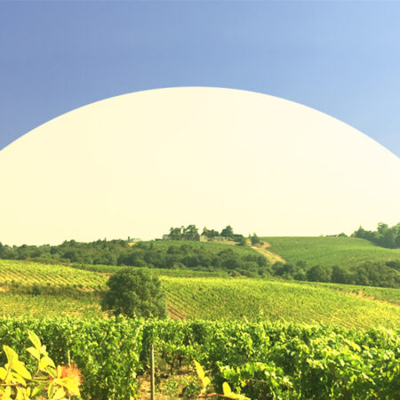 View on biodynamic vinyards